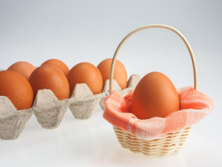 egg in basket with white background photo