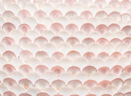 Wall of Shell photo