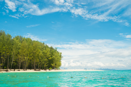 sea view of beach with tree at Phi Phi island photo