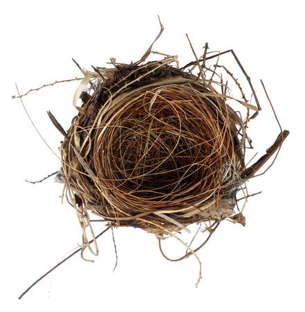 isolate bird nest on white background photo