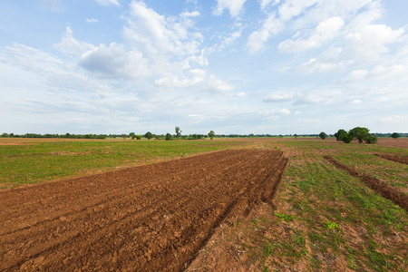 plowed field with tractor traces and forest from above angle view photo