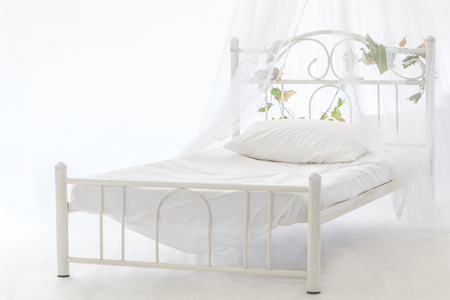 bedroom furniture: isolate vintage metal white bed with flowers and net and pillow Stock Photo