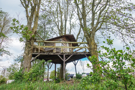 Tree house in garden next to village