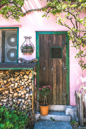 Rustic style exterior. Wooden door with white wall and tree wall crawler and firewood