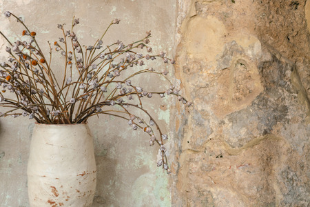 Dry plants in rustic vase with old grungy cement wall Stok Fotoğraf