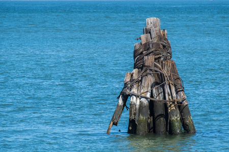 Wooden logs tied together in the sea in bay area of San Francisco