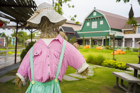 Well dressed scare crow with shirt and hats in farm with background of houses and barns