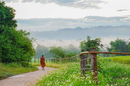 Unidentified monk walks down the hill in the morning Stock fotó