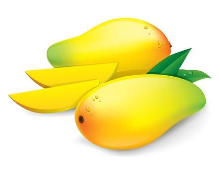 Mango, auf wei�en Hintergrund
