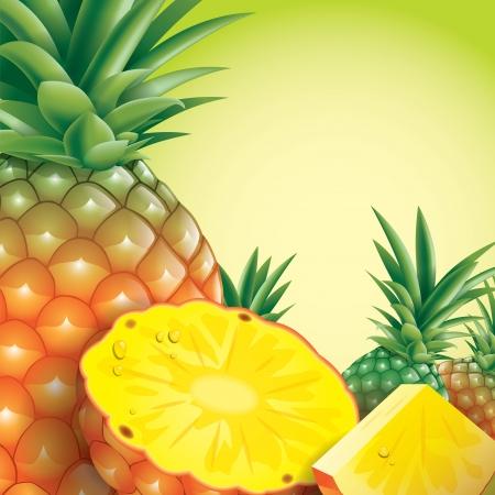 pineapple slice: Pineapple vector illustration on green background  Illustration