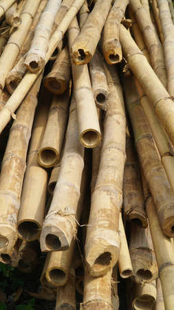 Stack of bamboo sticks. The color is brownish yellow