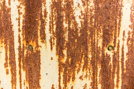 rusty nail: The surface of an old painted rusty steel sheet. Two nail heads. Background or texture. Stock Photo