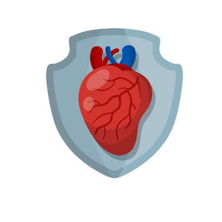 Medicine and cardiology. shield and protection of heath. Cartoon flat illustration. Guard and security