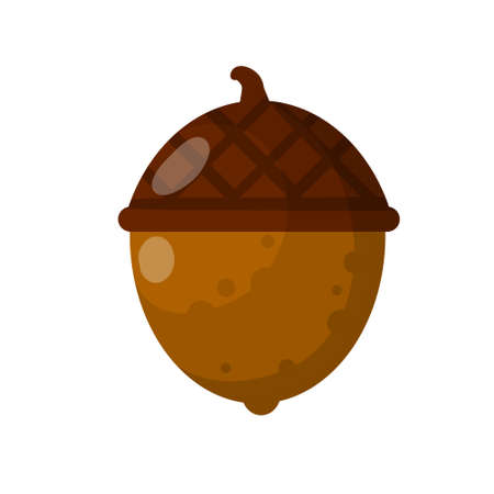 Hazelnut. Autumn harvest of wood. Natural food and a snack in a shell. Acorn. Brown forest object. Flat cartoon illustration