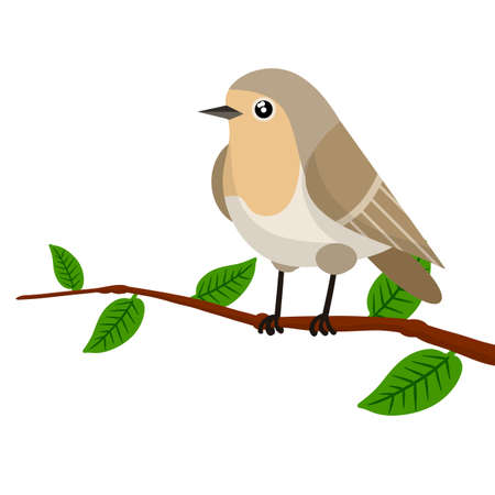 Forest bird sitting on a tree branch. Cute Animal with wings and green leaves. Illustration for greeting cards. Gray Nightingale. Cartoon flat illustration Ilustração