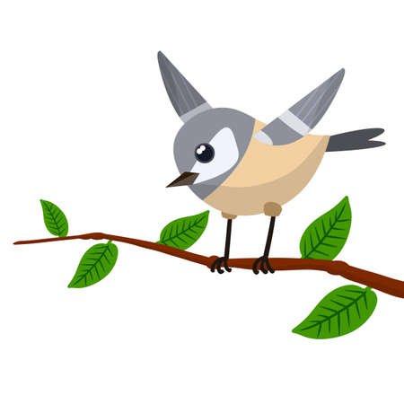 Forest gray bird sitting on a tree branch. Cute Animal with wings and green leaves. Illustration for greeting cards. Cartoon flat illustration