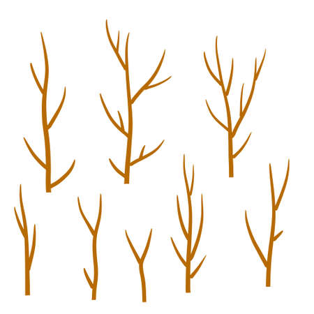Tree branch. Set of different brown sticks. Cartoon flat illustration. Element of nature, forest, Park 向量圖像