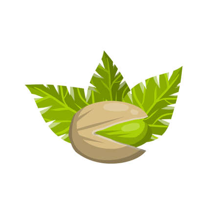 Pistachios. Green nuts in their shells. Walnut set with leaves. Snack and food. Cartoon flat illustration
