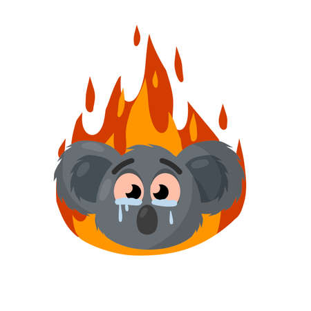 Koala is crying. Fire in Australia. Red flame. Natural disaster. Extinction of animal. Sad cute character and tears. gray beast's face. Cartoon flat illustration 矢量图像
