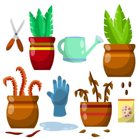 Set of domestic plants. Green and dry leaves. Equipment for care of flowers. Brown pot. Cartoon flat illustration. Watering can, farm gloves, scissors and seeds, puddle of water Vektorgrafik