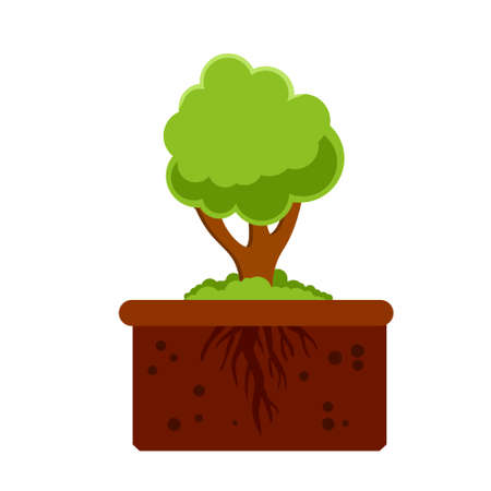 Root system of tree. Nature and forest. Layer of earth and soil. Plant growth. Summer season. Botany and forestry. Brown ground. Flat cartoon illustration