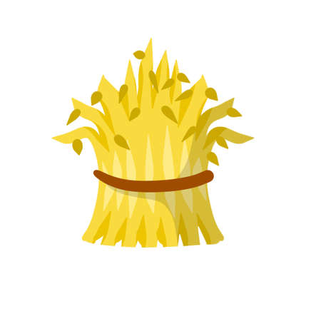 Sheaf of hay. Village harvest. Yellow dried plants. Production of natural food on the farm. Countryside is a Stack of wheat ears