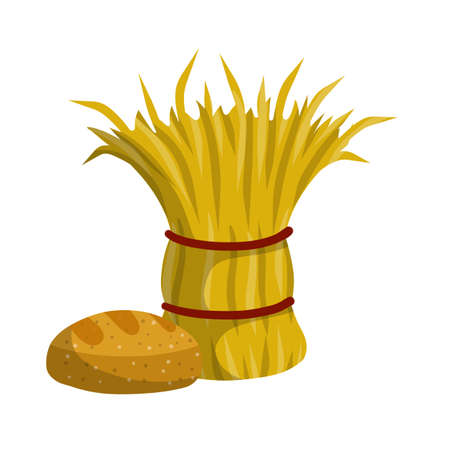 Sheaf of hay. Countryside Stack of wheat ears. Village harvest. Production of natural food on farm. Rustic bread.