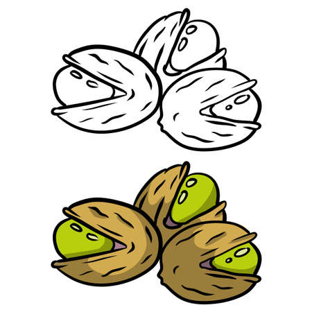 Pistachios. Green nuts in their shells. Set of Walnut. Snack and food. Cartoon flat illustration.