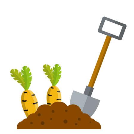 Bed with carrot. Cartoon flat illustration. Growing vegetables on platform.
