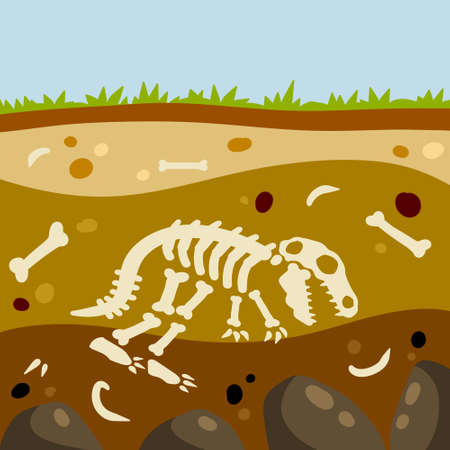 Dinosaur skeleton. Bones of a prehistoric lizard. Land in the section. Soil with layers. Historical find and archaeological excavations. Flat cartoon landscape