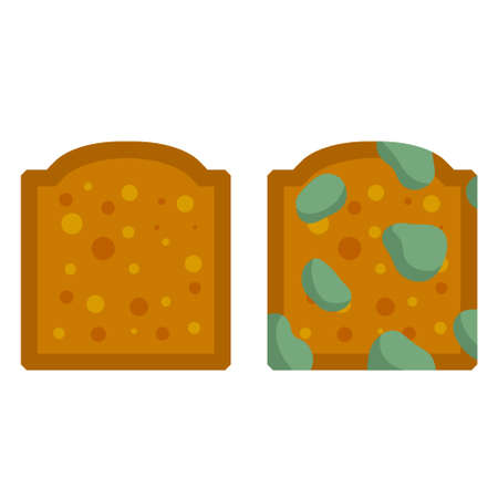 Bread with mold. Incorrect storage of the product. Fungus and rot. Sliced loaf for a sandwich. Flat illustration