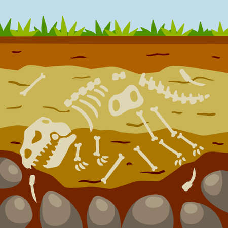 Dinosaur skeleton. Bones of a prehistoric lizard. Land in the section. Soil with layers. Flat cartoon landscape. Historical find and archaeological excavations