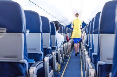 stewardess in the plane