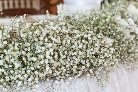 wildflowers: Wedding decor of wildflowers decorate the table