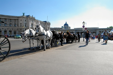 Horse drawn carriages in Hofburg, Vienna.