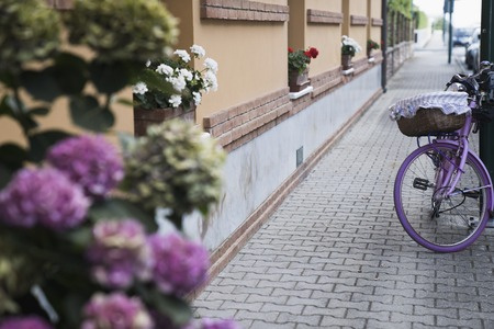a street with flowers and an old decorative pink bicycle Zdjęcie Seryjne