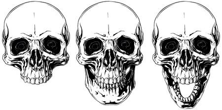 corpse: White graphic human skull with black eyes set Illustration
