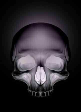Black graphic human skull with white eyes X-ray style illustration Stock Photo