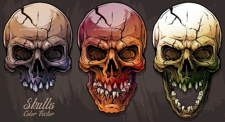Detailed graphic realistic cool colorful human skulls with crack and broken teeth. On gray grunge background. Vector icon set. Vector Illustration