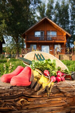 country house gardening