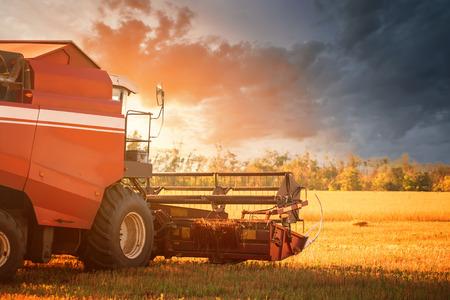 cosechadora: cosechadora