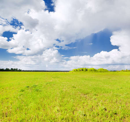 dramatic sky: green field and dramatic sky Stock Photo