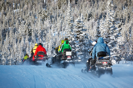 snowmobiling in forest Stock Photo