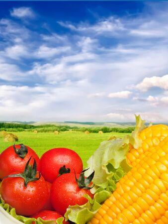 mais: vegetables harvest