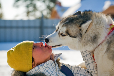 moving activity: young woman with husky Stock Photo