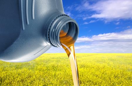 ecodiesel: Oilseed Rape