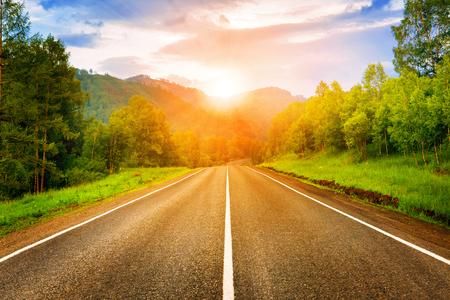 curve road: sunny road