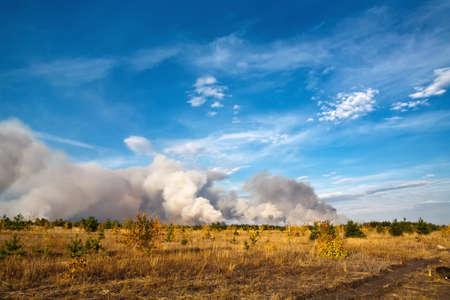 convulsion: forestfire