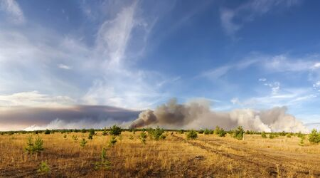 convulsion: incendio forestal