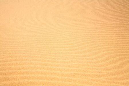 dunes: sand dunes